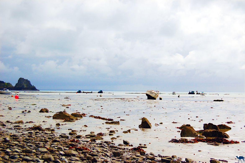 Le Chameau Bleu - Blog Voyage Cancale - Port de Cancale