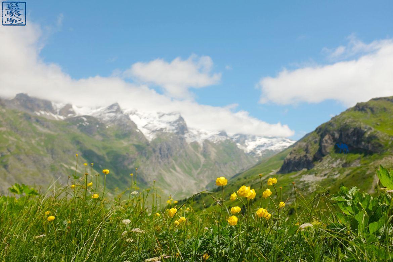 Le Chameau Bleu - Val d'Isère Champêtre - Séjour en Montagne France
