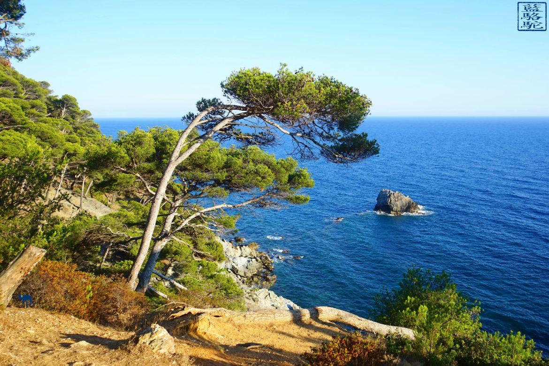 Le Chameau Bleu - Blog Voyage Six Fours Les Plages - France - Mont Salva - Brusc - Var