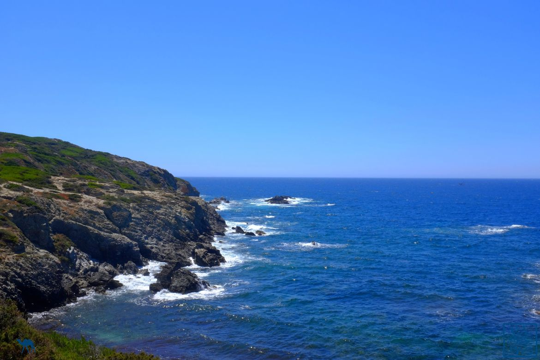 Le Chameau Bleu - Blog Voyage Var Embiez - Falaises de l'ile des Embiez - Var - Séjour en Méditerranée