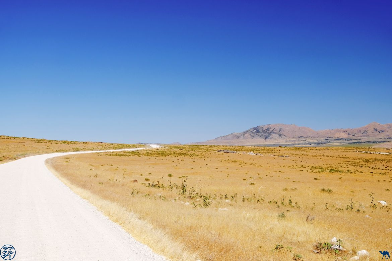 Le Chameau Bleu - Blog Voyage Utah - Balade dans Golden Spike Park