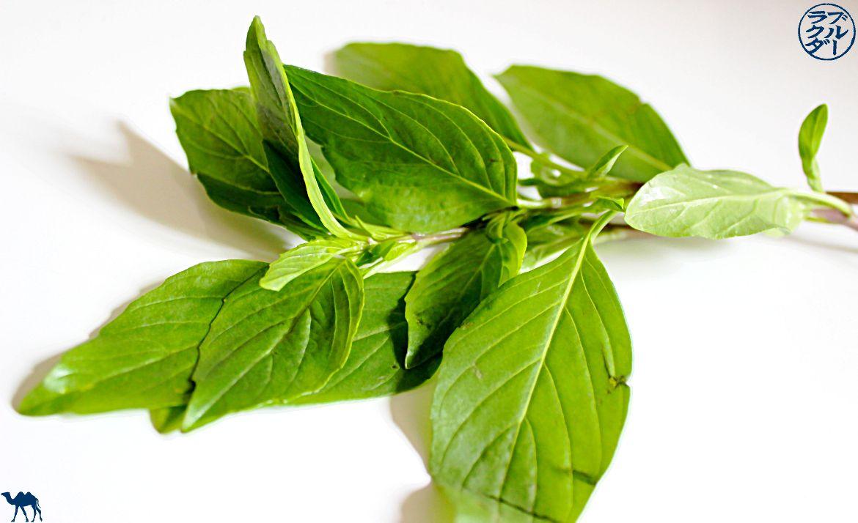 Le Chameau Bleu - Blog Cuisine asiatique et Voyage- Recette de tartare Vietnamien - ingrédient Basilic Thaie