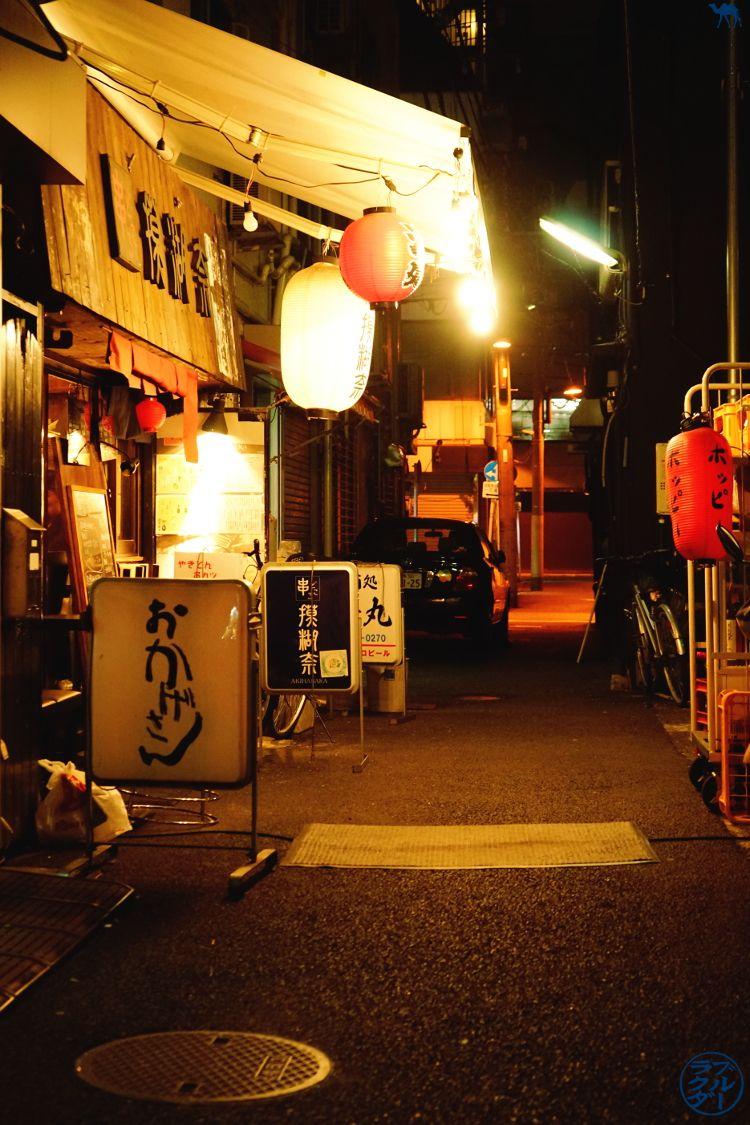 Le Chameau Bleu - Blog Restaurant Tokyo - Mocona Akihabara