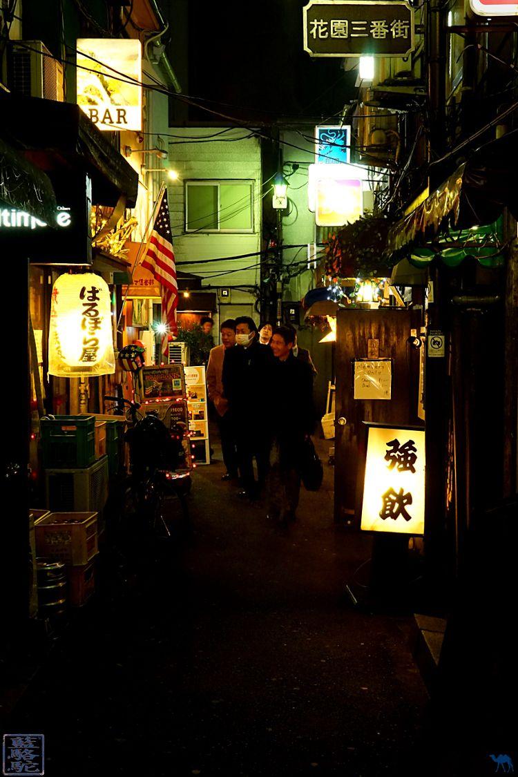 Le Chameau bleu - Blog Voyage Japon - Séjour au Japon - Ruelle de Tokyo
