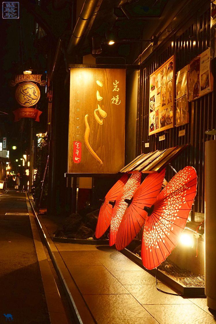 Le Chameau bleu - Blog Voyage Japon - Séjour au Japon - Ruelle aux ombrelles