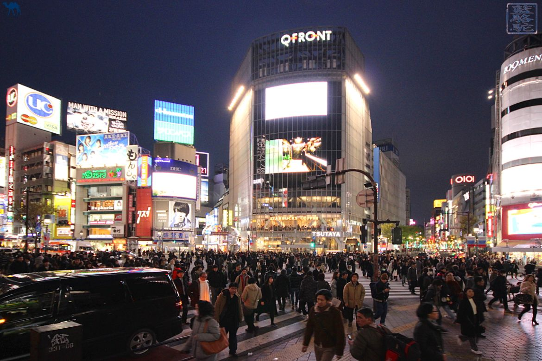 Le Chameau bleu - Blog Voyage Japon - Voyage au Japon - Tokyo visite de SHinjuku