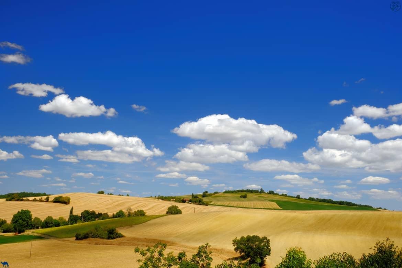 Le Chameau Bleu - Blog Voyage et Cuisine - Campagne de Lachapelle - Tarn et Garonne