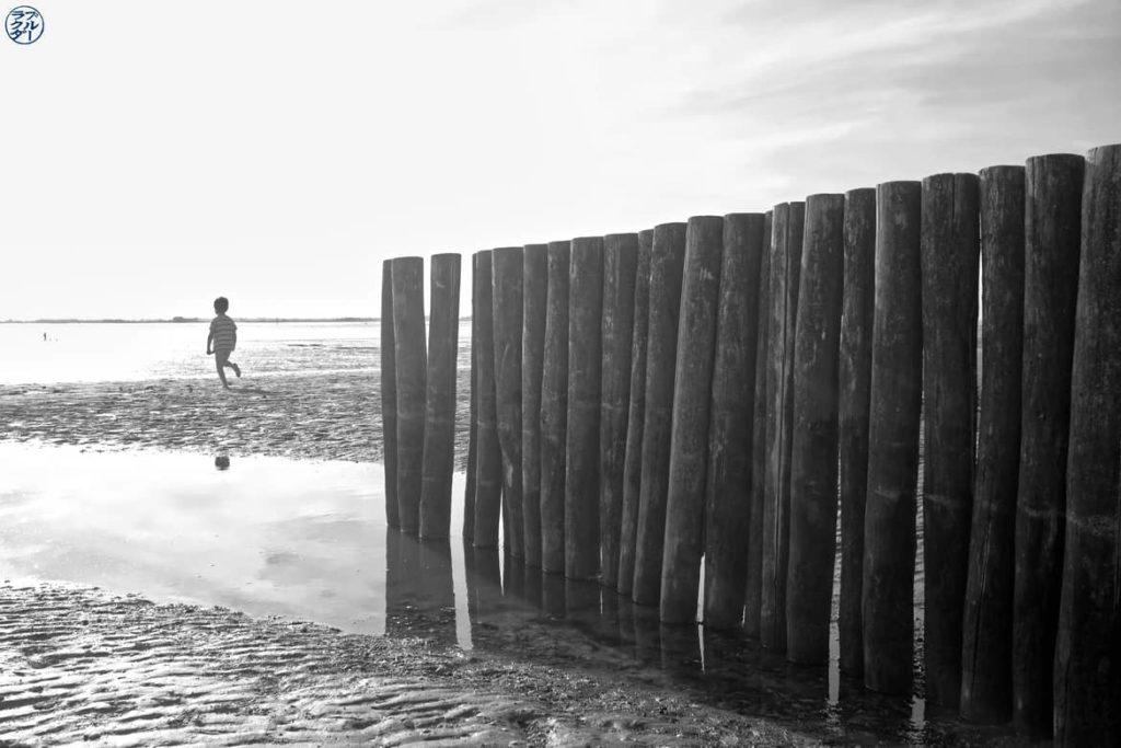 Le Chameau Bleu - Blog Voyage et Photo - Le Crotoy