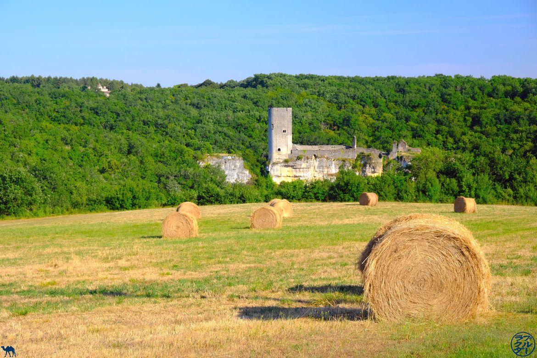 Le Chameau Bleu - Blog Voyage Lot Et Garonne - Chateau de Gavaudun