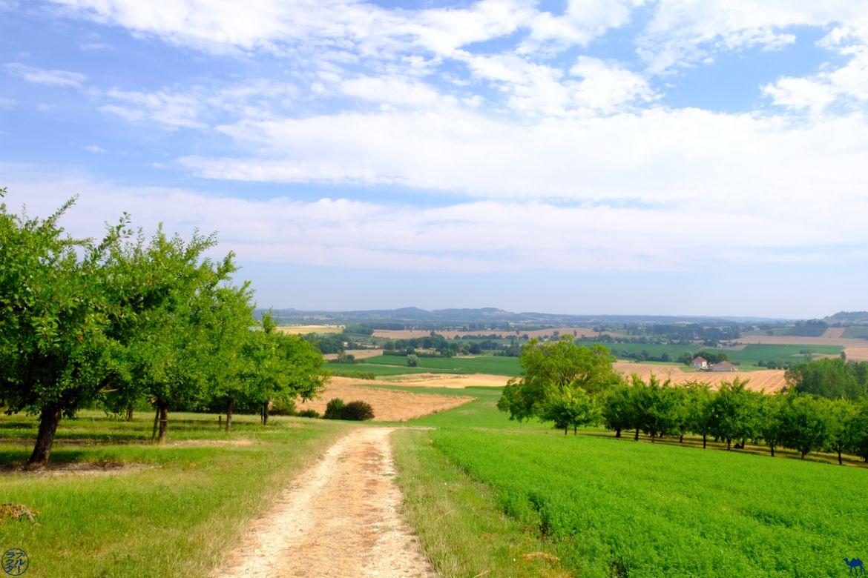 Le Chameau Bleu - Blog Voyage Lot Et Garonne - Saint Aubin et ses pruniers