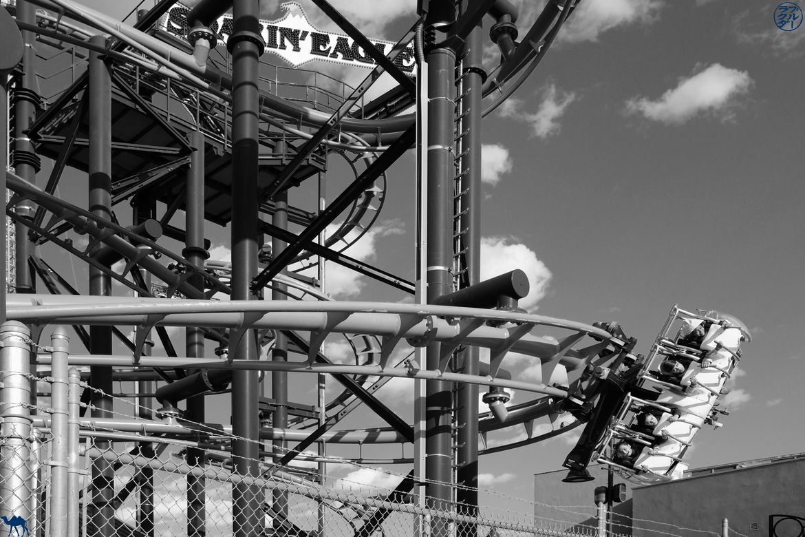 Le Chameau Bleu - Blog Voyage New York - Attraction de Luna Park