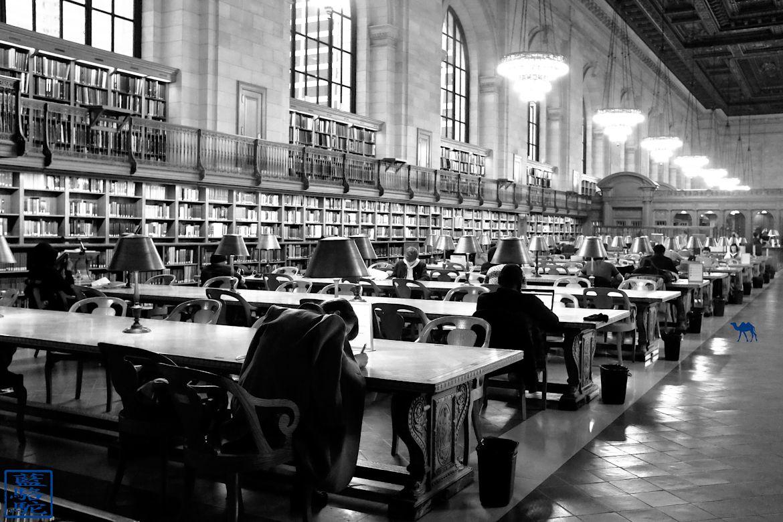 Le Chameau Bleu - Bibliothèque de New York - Visite de New York USA