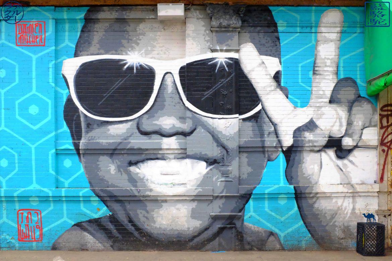 Le Chameau Bleu - Enfant Black à Lunettes - BUshwick - Street Art - New York City USA