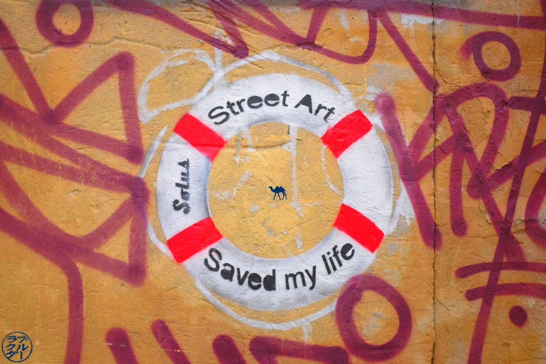 Le Chameau Bleu - Blog Voyage New York City Street Art saved my life - Solus - Bushwick New York