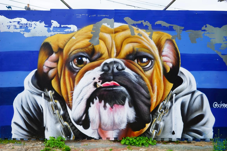 Le Chameau Bleu - Street Art Bushwick - Bouledog - New York City