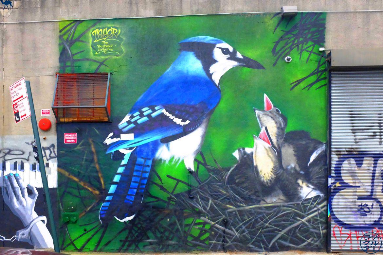 Le Chameau Bleu - Blog Voyage New York City oiseaux - Bushwick - Street Art