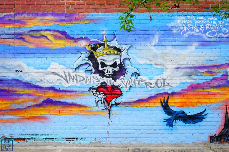 Le Chameau Bleu - Blog Voyage New York City Street Art Bushwick -Vandals in Control- New York