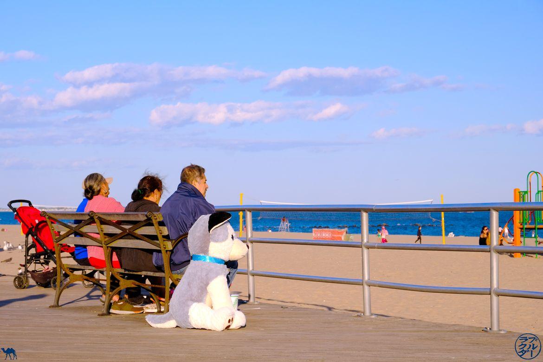 Le Chameau Bleu - Blog Voyage New York - Badauds à Coney Island