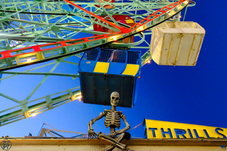 Le Chameau Bleu - Blog Voyage NewYork - Squelette de Luna Park Coney Island