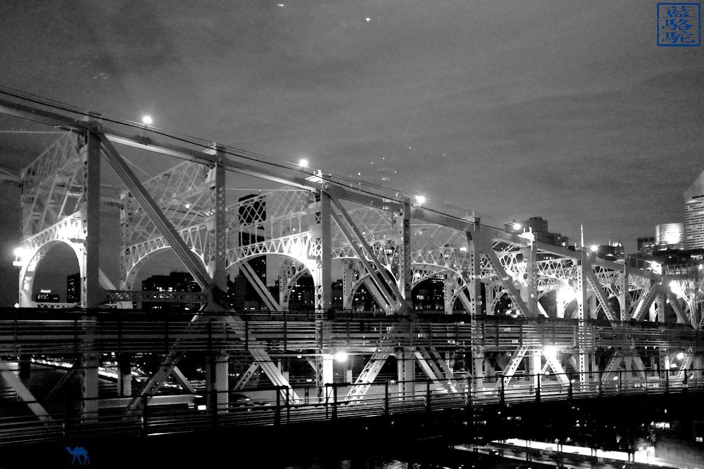 Le Chameau Bleu - Blog Voyage New York City - QueensBoro bridge depuis le téléphérique