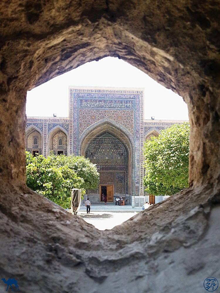 Le Chameau Bleu - Blog Voyage Ouzbékistan - Lucarne sur Samarcande