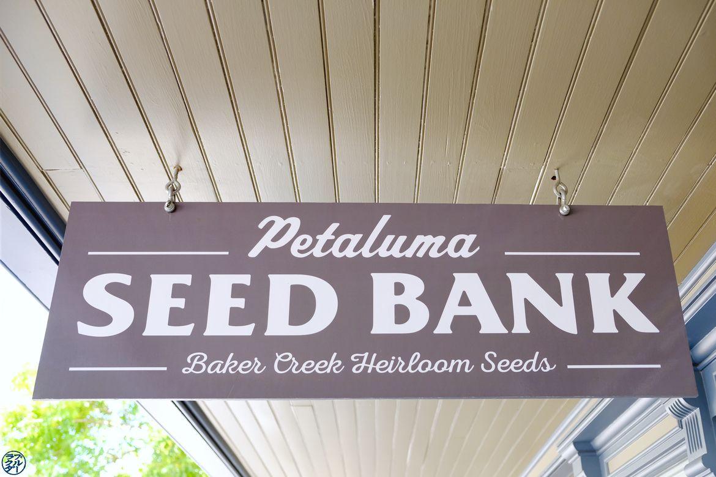 Le Chameau Bleu - Blog Voyage Napa Valley - Banque de graines à Petaluma