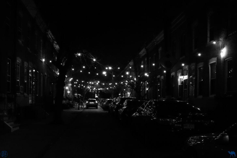 Le Chameau Bleu - Blog Voyage Philadelphie USA - Ruelle et Guirlande