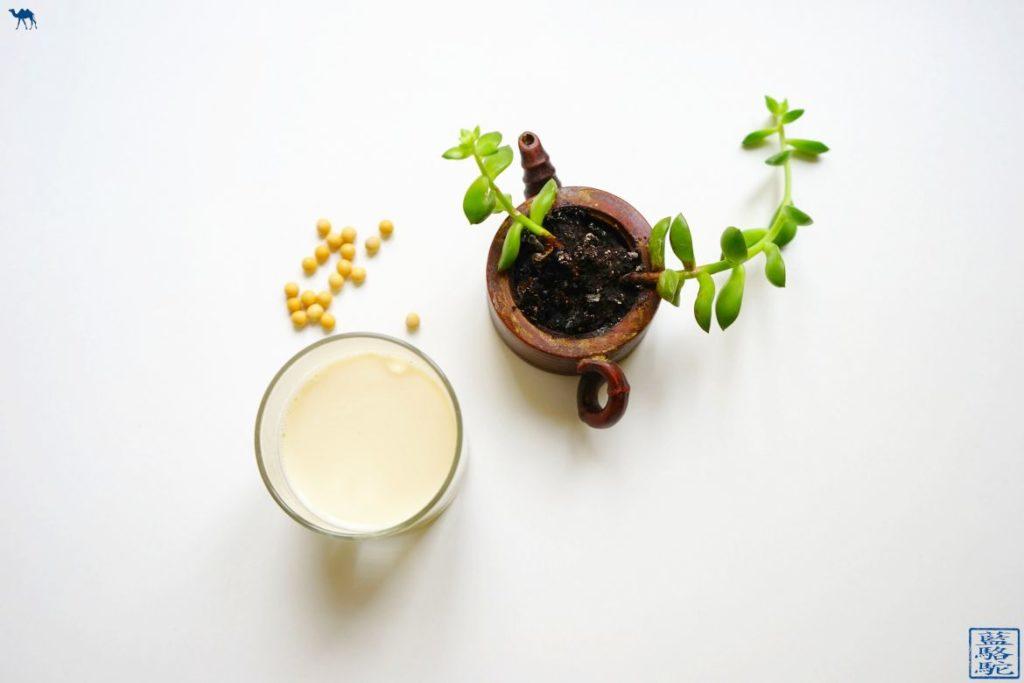 Le Chameau Bleu - Blog Voyage et Cuisine : Recette du Lait de Soja fait maison