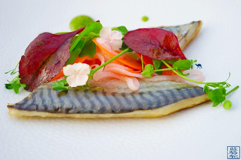 Le Chameau Bleu - Blog Gastronomie et Voyage - Sanary O Petit monde Restaurant Sanary - Maquereau du restaurant O Petit monde