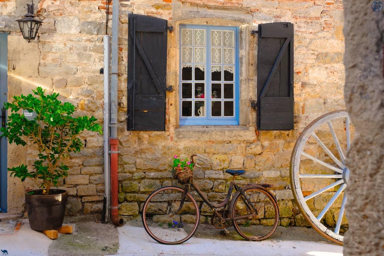 Le Chameau Bleu - Blog Voyage et Cuisine - Rue Saint Antonin Noble Val - Tarn et Garonne