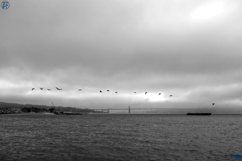 Le Chameau Bleu - Blog Voyage à San Francisco - Front de Mer