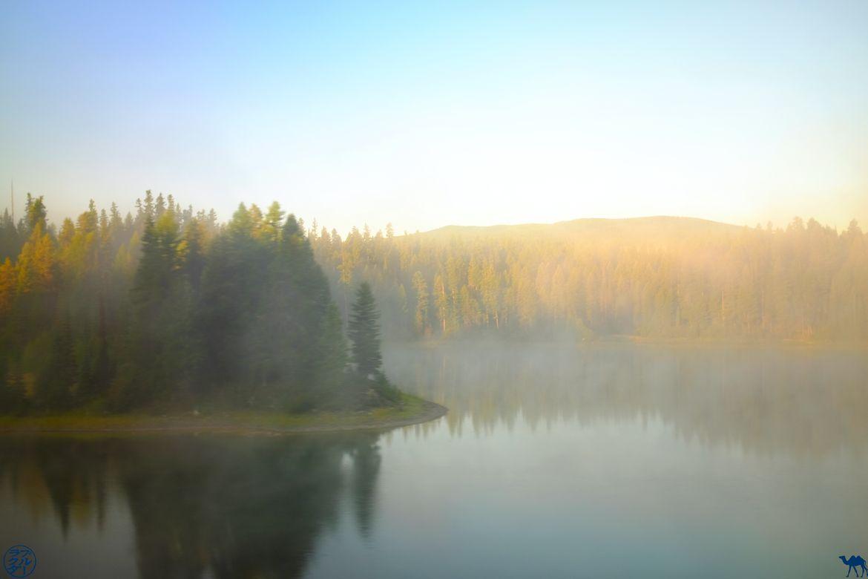 Le Chameau Bleu - Blog Voyage Train Seattle-Chicago - Brume et Lac