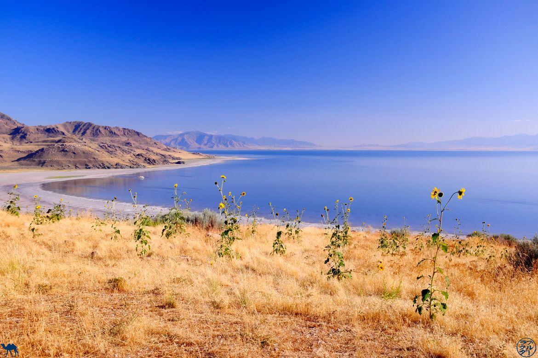 Le Chameau Bleu - Blog Voyage Utah - Couché de soleil à Antelope Park