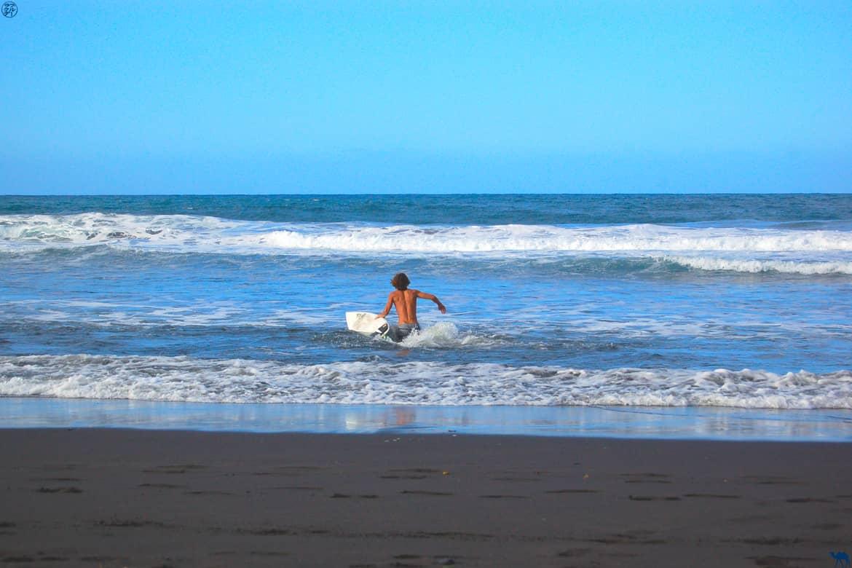Le Chameau Bleu - Blog Voyage Hawaii -Surfeur Hawai