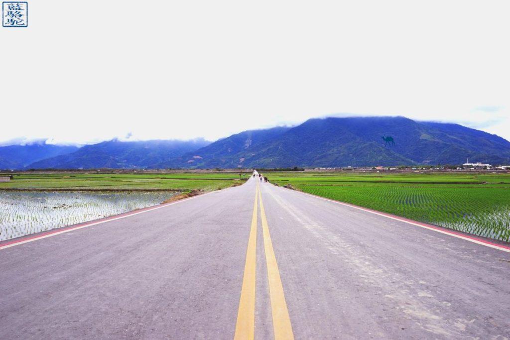 Le Chameau Bleu - Blog Voyage Taiwan - Route à l'infini - Voyage à Taiwan - Promenade à vélo dans les rizières