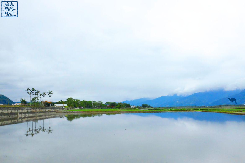 Le Chameau Bleu - Blog Voyage Taiwan - Reflet Riziere et Velo à ShiChang - Voyage à Taiwan