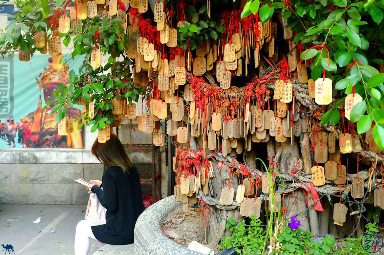 Le Chameau Bleu- Blog Voyage Taiwan-Temple aux banians