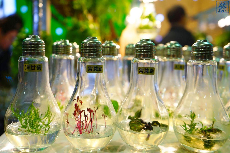 Le Chameau Bleu - Blog Voyage Taiwan - Plantes dans des ampoules au marché au fleur de Taipei - Taiwan