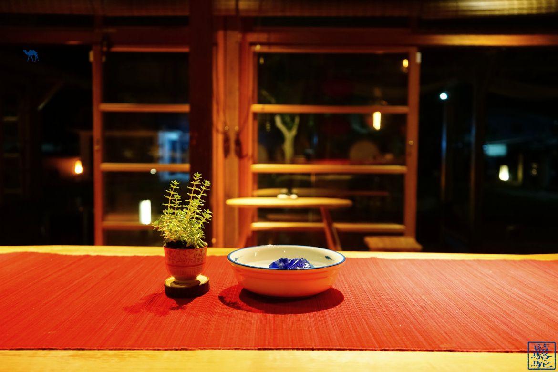 Le Chameau Bleu - Blog Taitung - Chuchu - Vacances à Tawain dans la ville de taitung