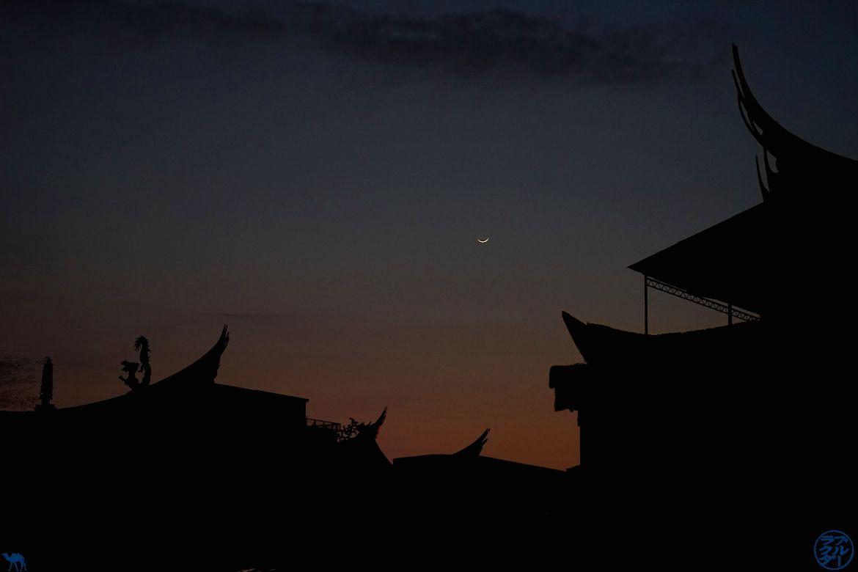 Le Chameau Bleu - Blog Voyage Taiwan- Toits de tainan