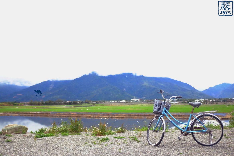 Le Chameau Bleu - Blog Voyage Taiwan - Taiwan voyage - Promenade en vélo