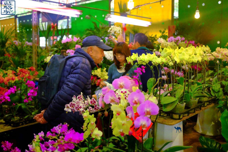 Le Chameau Bleu - Blog Voyage Taiwan - Marché aux fleurs de Taipei La Capitale