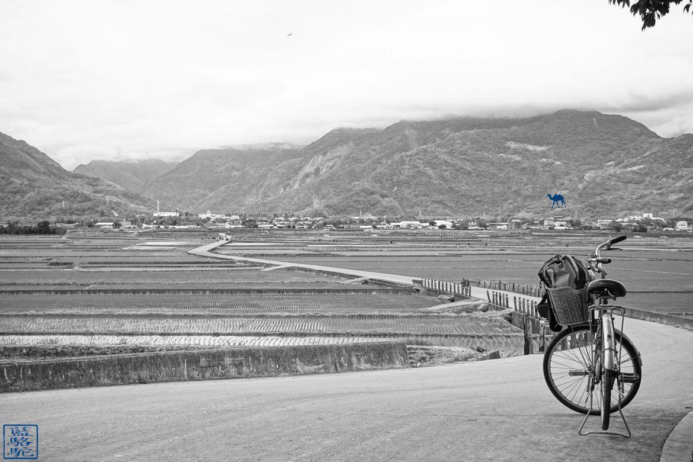 Le Chameau Bleu - Blog Voyage Taiwan - Riziere et Velo à ShiChang - Voyage à Taiwan