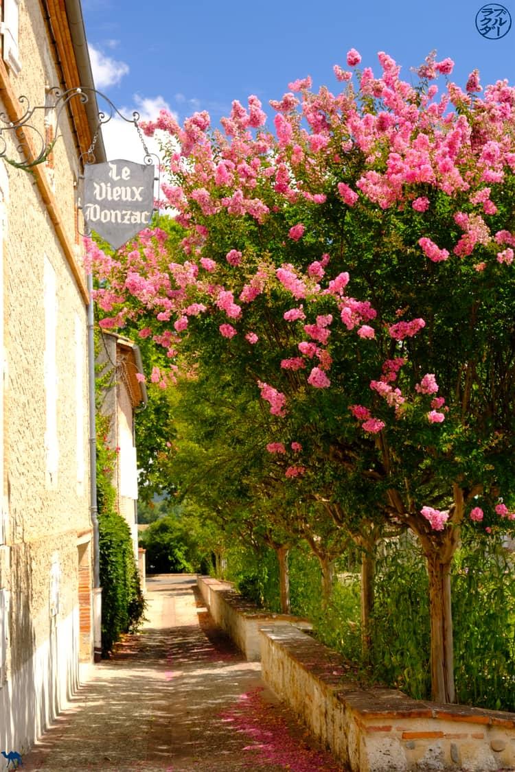 Le Chameau Bleu - Blog Voyage et Cuisine - Donzac - Tarn et Garonne
