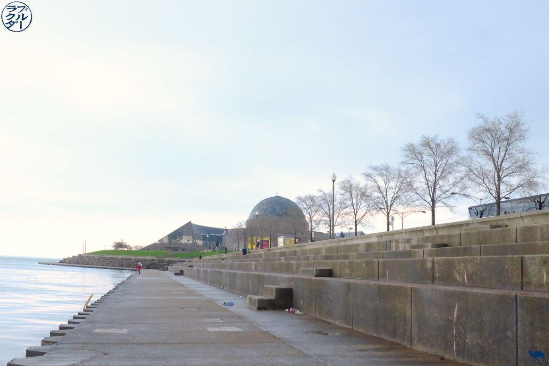 Le Chameau Bleu - Adler Planetarium - Chose à faire à Chicago