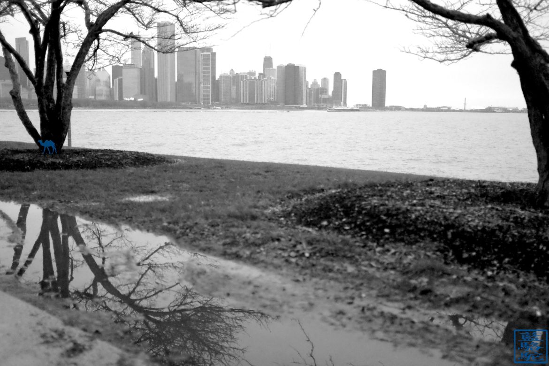 Le Chameau Bleu - Que faire à Chicago - Tourisme Chicago USA