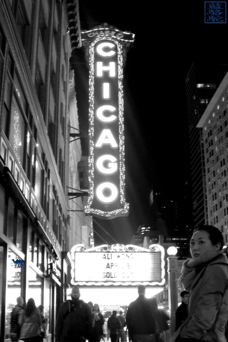 Le Chameau Bleu - The Chicago Theatre - Séjour aux USA