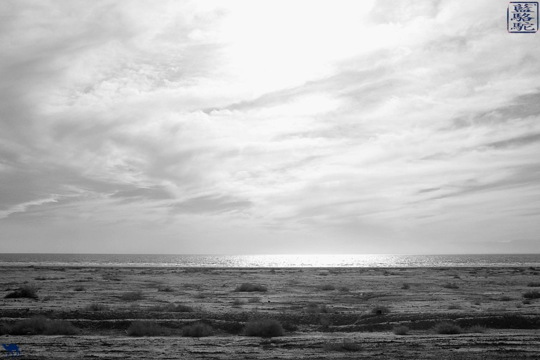 Le Chameau Bleu - Blog Voyage Californie -Voyage le long de Salton Sea - Californie