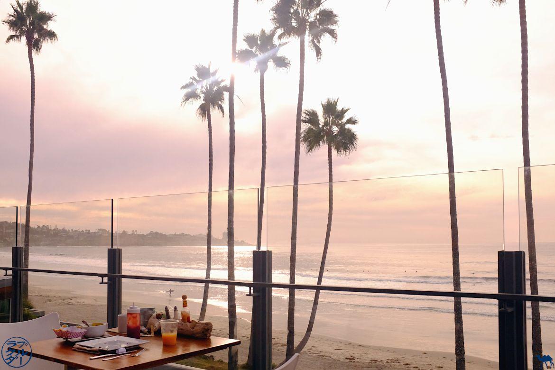 Le Chameau Bleu - balade sur la plage de San Diego en Californie