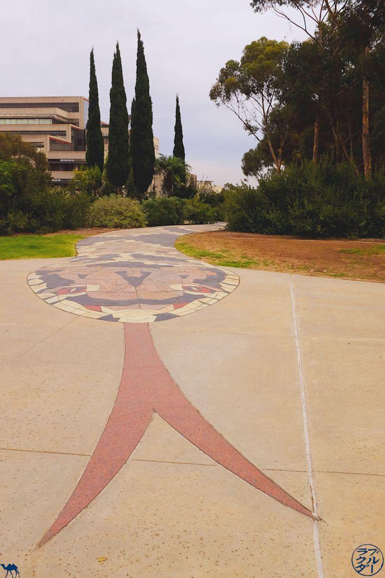 Le Chameau Bleu - Snake Path à l'université de San Diego - Visite de l'UCSD